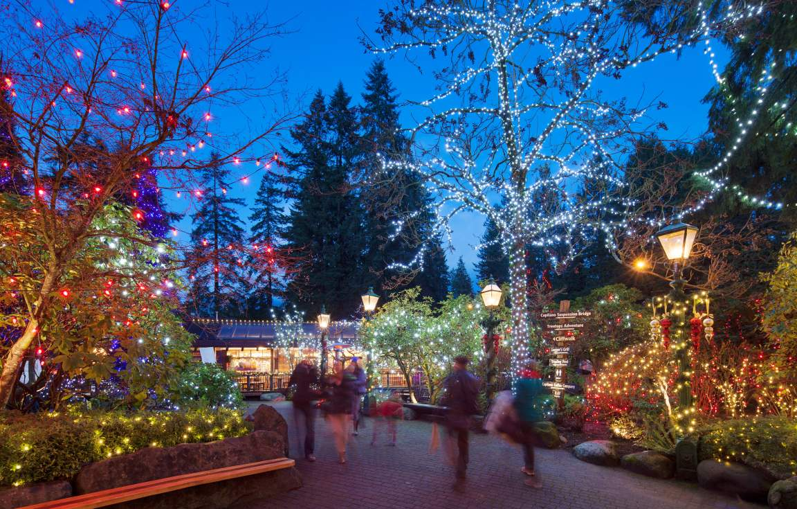 Canyon Lights Park at Capilano Suspension Bridge Park