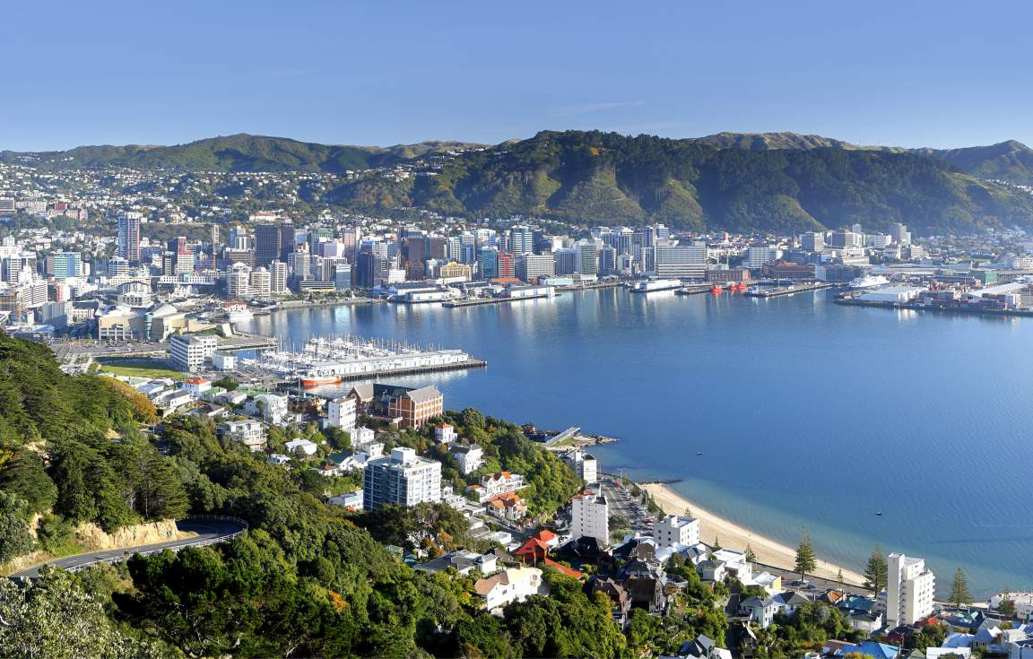Mount Victoria Wellington - Credit Rob Suisted
