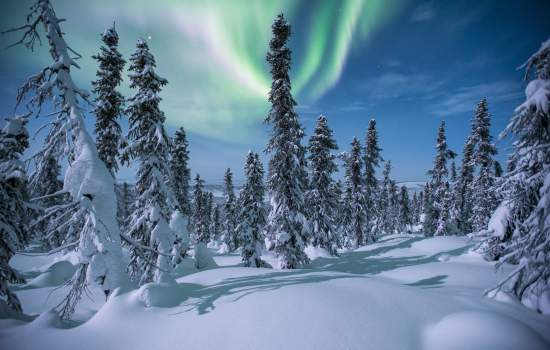 Enjoy Winter in the Yukon